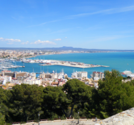 Oli de Mallorca (DOP)