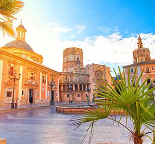 Aceite de la Comunitat Valenciana (DOP)