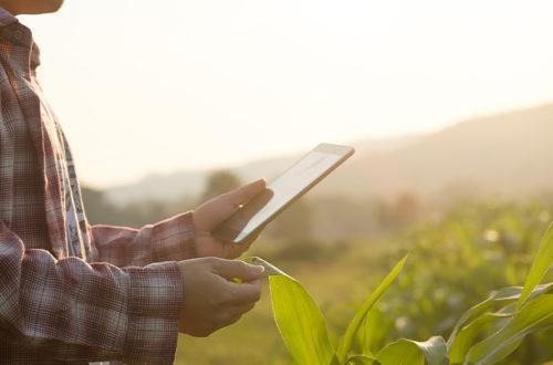 digitalización del sector agrícola