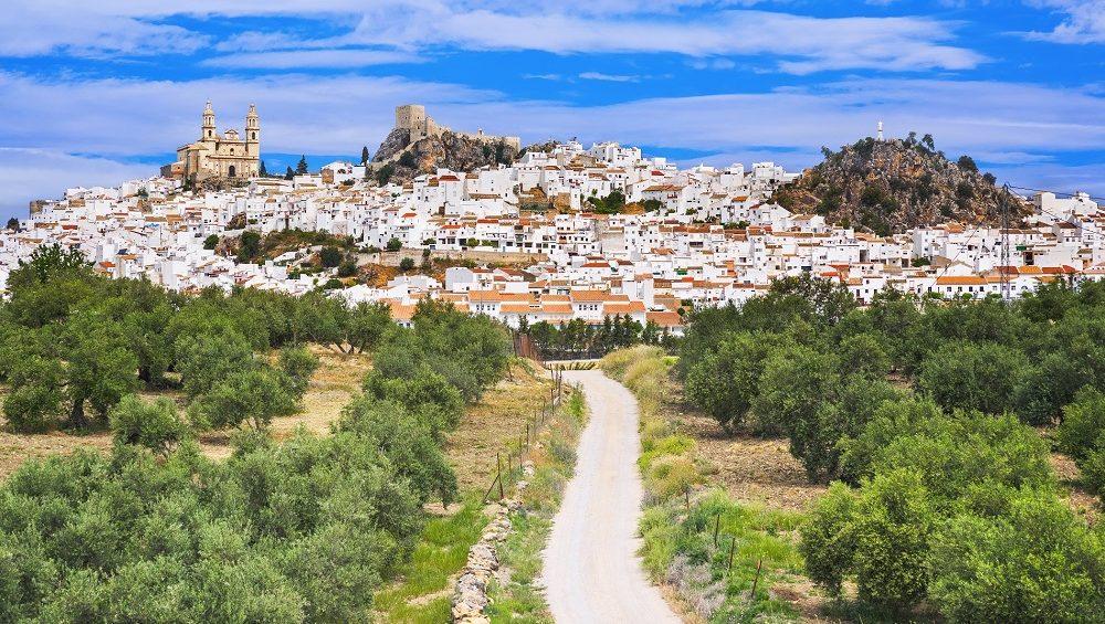 oleoturismo turismo sostenible desarrollo rural aceite de oliva virgen extra aove La Comunal